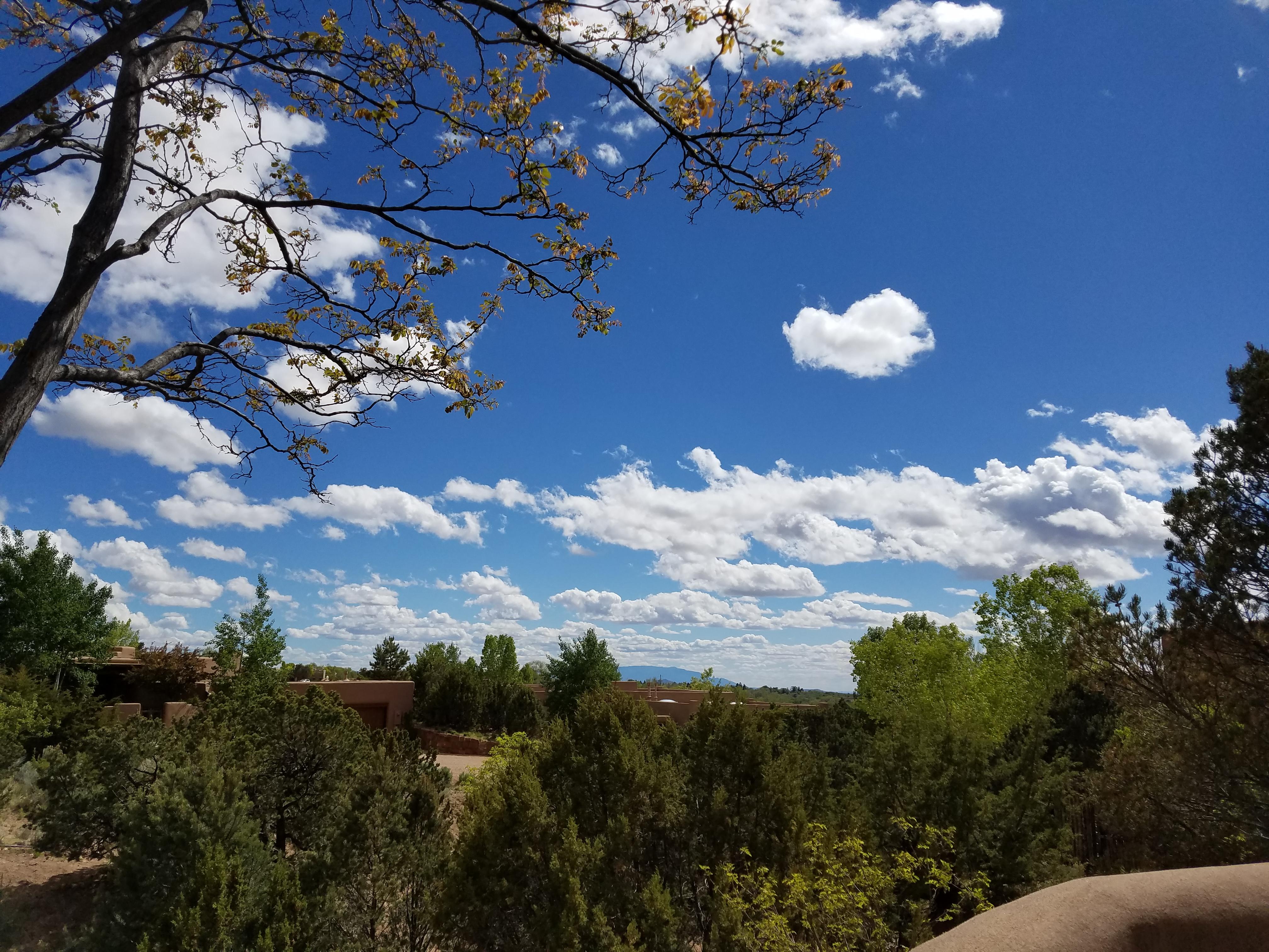 Pretty day